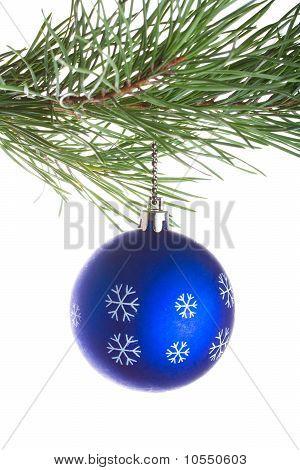 Blue Ball On Pine Tree Branch