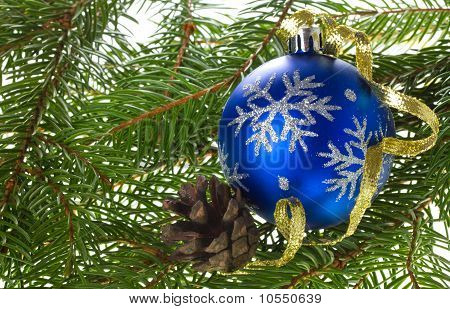 Blue Ball And Cone On Fir Tree Branches
