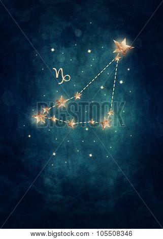 Capriconus astrological sign in the Zodiac