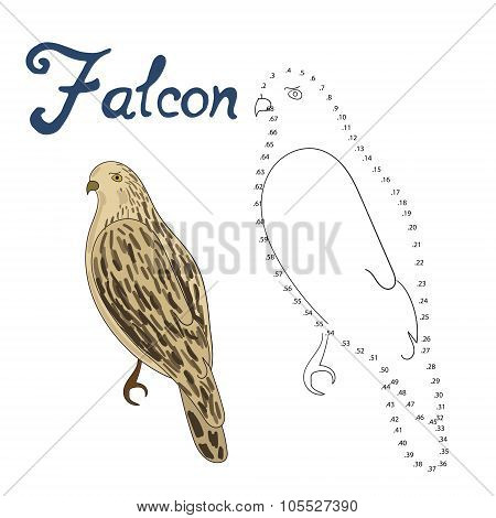 Educational game connect dots draw falcon bird