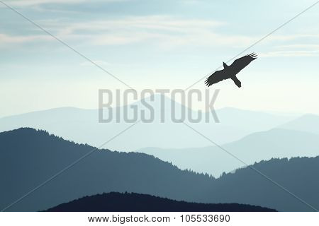 A bird flying over mountains