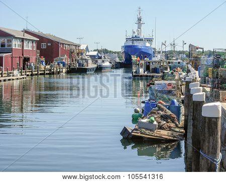 Harbor Scenery In Portland
