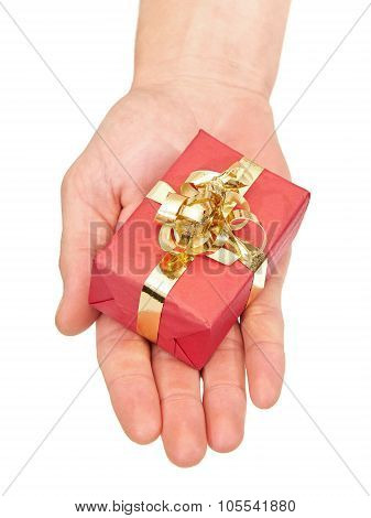 Hand Holding A Small Christmas Present