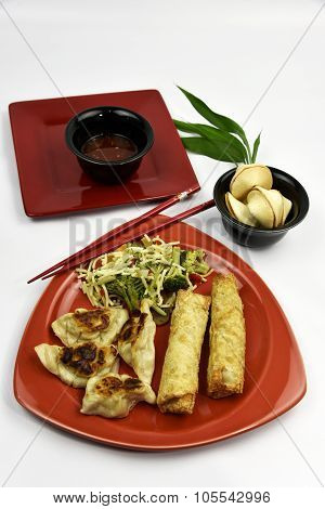 Pork Rangoon Asian Dumpling Entree