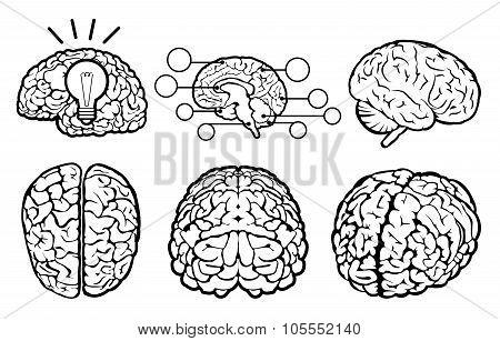 Human brain icons. Human brain icons art. Human brain icons web. Human brain icons new. Human brain icons www. Human brain icons app. Human brain set. Human brain set art. Human brain set web