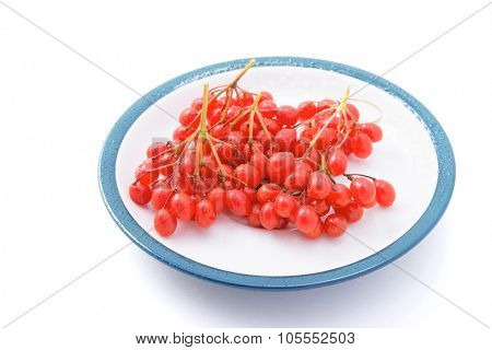 Viburnum berries on a saucer isolated on a white background. close-up