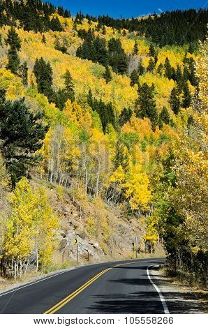 Aspen Mountain And Road