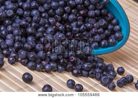 scattered blueberries