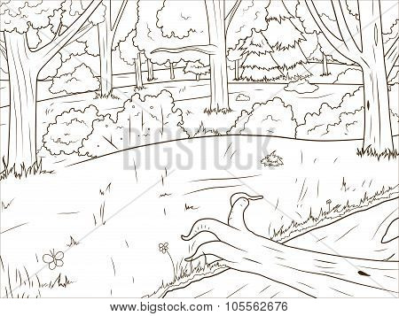 Forest cartoon coloring book vector