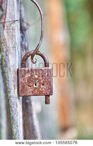 Ancient old rusty padlock on wooden door. Texture, closeup