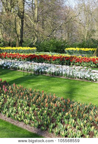 Many Different Colorful Flowerbeds In The Park