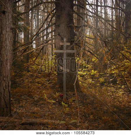 Cross In The Misty Forest