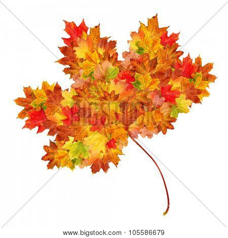 Autumn leaf shape made up of smaller autumn leaves on a white background