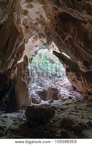 Entrance To Cueva Ventana - Window Cave In Puerto  Rico