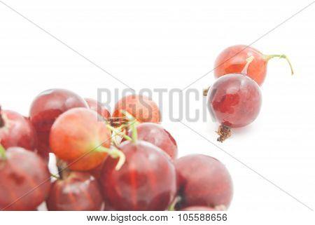 Tasty Red Gooseberries On White