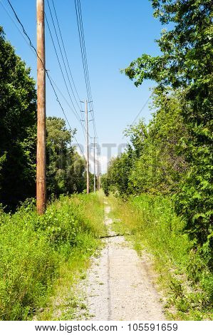 Dirt Path In Forest Receding Along Power Lines