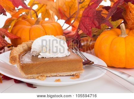 Piece Of Pumpkin Pie