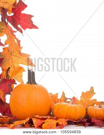 Colorful Fall Decoration