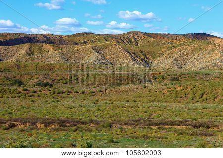 Rural Grasslands