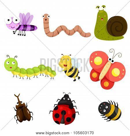 Illustration of bug