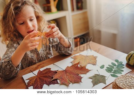 cute child girl making herbarium at home, autumn seasonal crafts