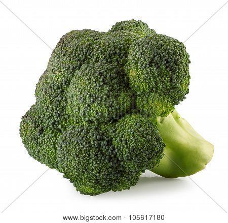 Broccoli Isolate On White