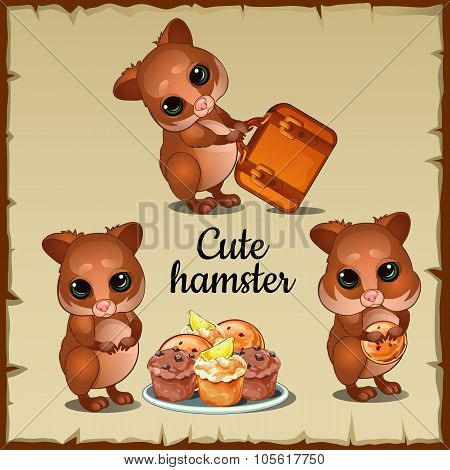 Three cute funny hamster and tasty food