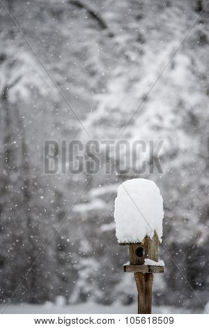 Bird Feeder With A Cap Of Snow Standing In A Winter Garden