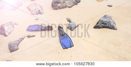 Blue Diving Fins