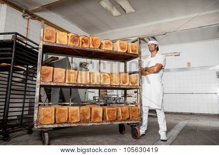 Low angle view of confident male baker standing arms crossed by fresh bread rack in bakery