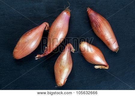 Close up Raw Organic Onion Shallots.  Background