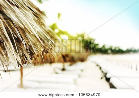 Closeup on sunshade from palm leaves, chairs for sunbathing behind