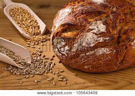 a loaf of bread. healthy diet with fresh baked goods.