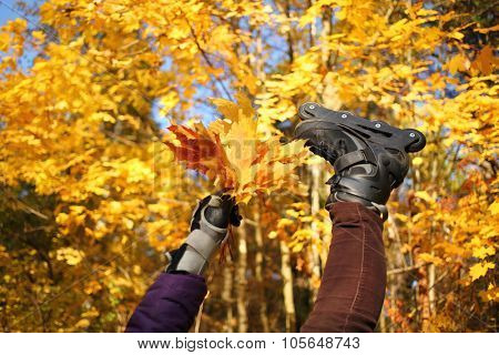 Womans foot in rollerblades and hand with yellow maple leaves in front of golden trees