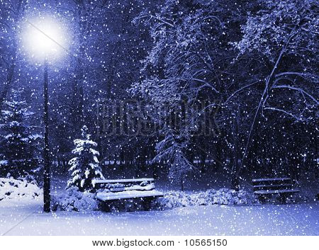 Bench, Christmastree And Lantern