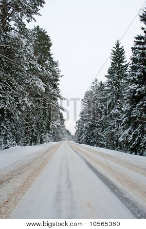 Country Road In Snow