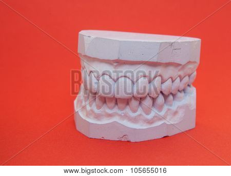 Plaster cast of teeth on red background