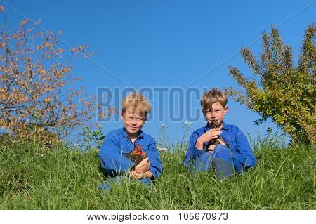Farm boys sitting in grass with chickens