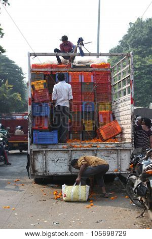 Pune, India - October 21, 2015: Unloading Marigold