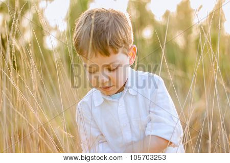 Kid in field playing with spikes at summer sunset