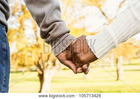 Close up view of senior couple holding hands in parkland