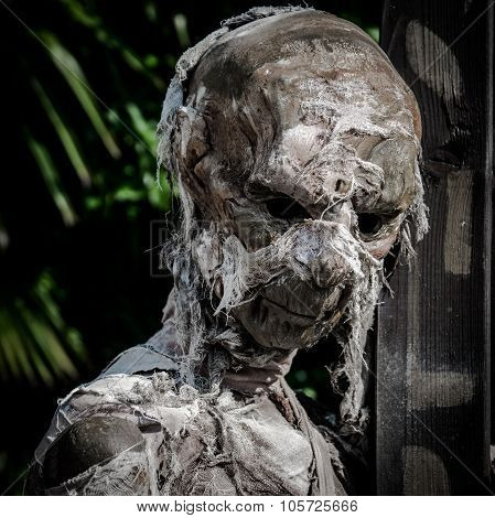 Mummified Corpse Wrapped In A Bandage Worn Down.