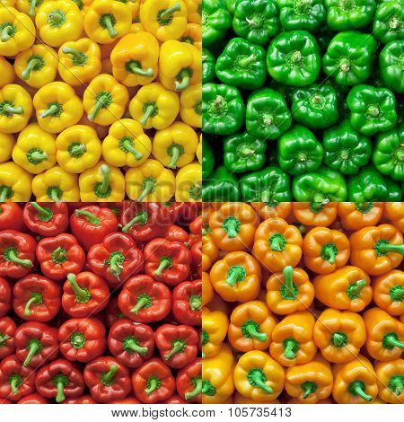 Collage Of Fresh Bell Peppers