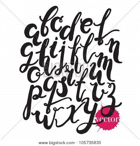 Hand Drawn Alphabet.black Vector Letters Isolated On White Background.