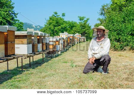 Beekeeper on apiary