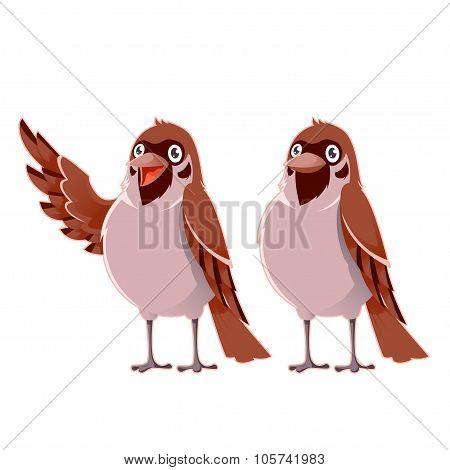 Happy cartoon  Sparrows