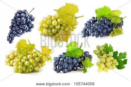 Set blue and green grapes with leaf. Isolated on white background. Illustration