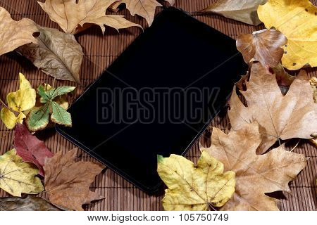 Tablet on Autumn background