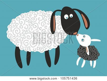 Funny sheep and lamb