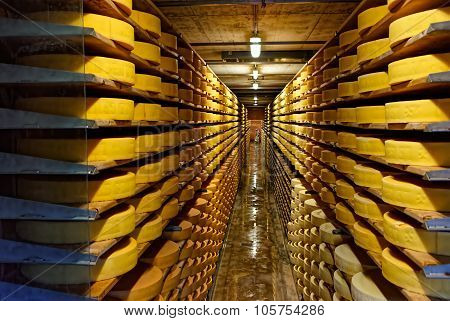 Round Stacks Of Cheese Curing In A Cellar Of Maison Du Gruyere Cheese Factory